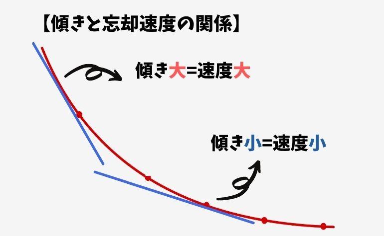 忘却曲線の傾きと忘却速度の関係